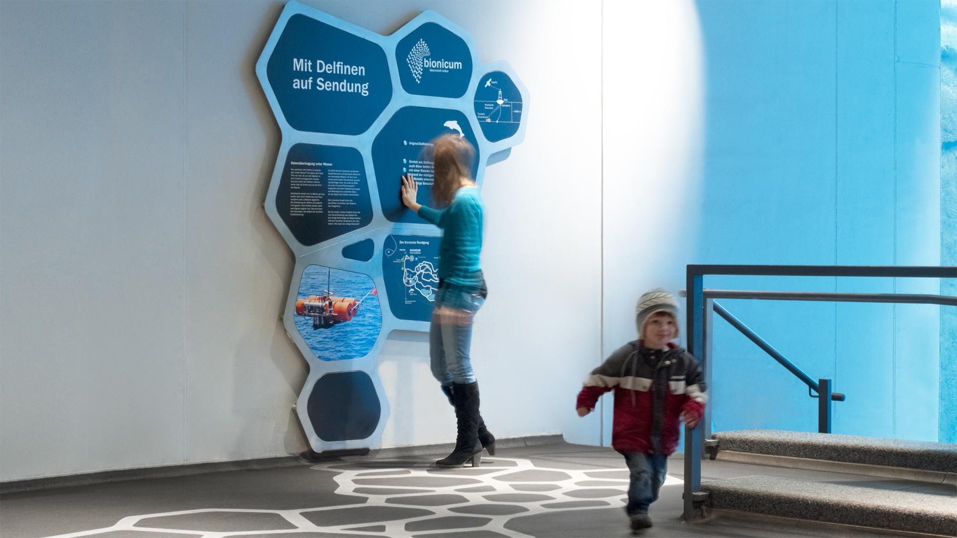 Ausstellungsdesign Bionicum Tiergarten Nürnberg