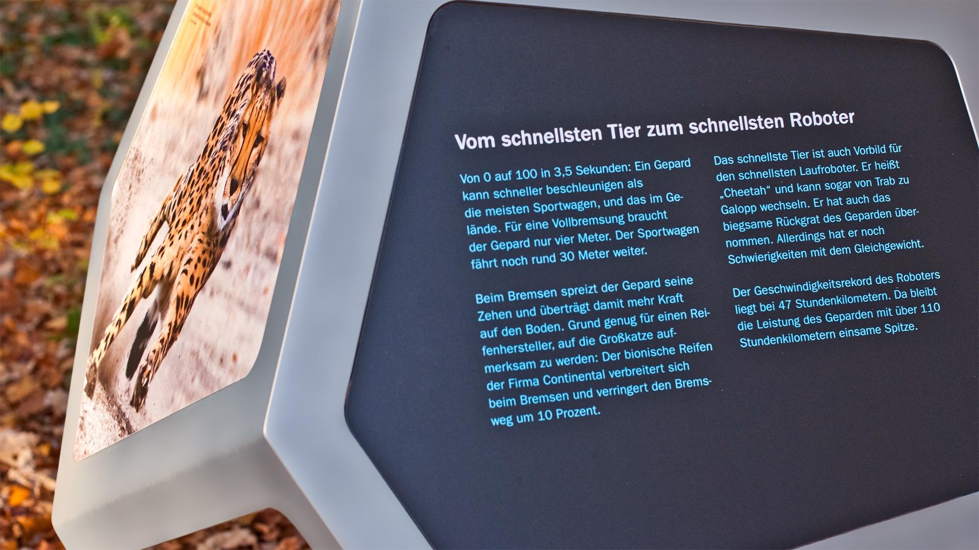Ausstellungsdesign Bionicum