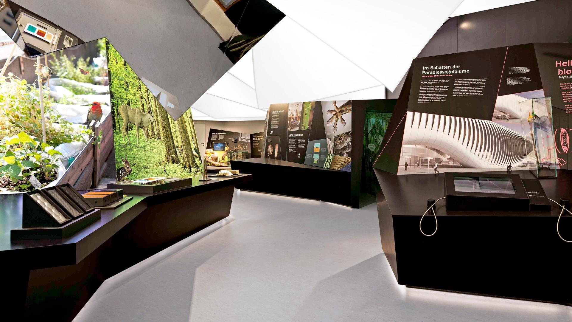 Raumkonzept Ausstellung Bionicum