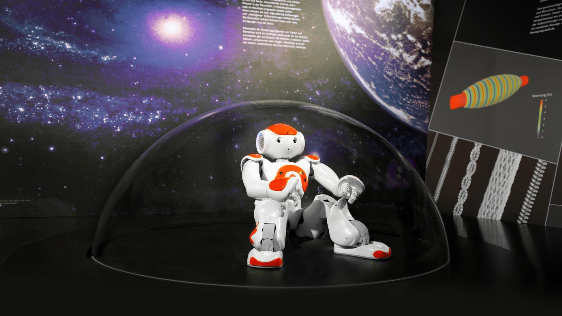 interaktive Exponate Roboter Nao Bionicum